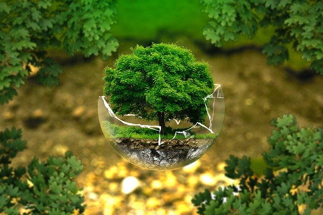 Umwelt Erde