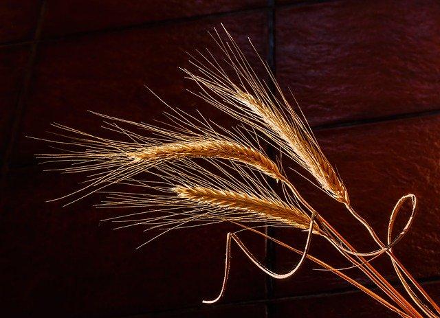 Getreide per Handmühle verfeinern